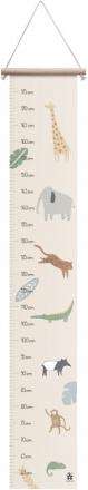 Sebra Height measurement Wildlife