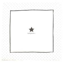 Alvi 612407999 Krabbeldecke Classic Star mit Stick grey bellybutton 120x120 2016/2017