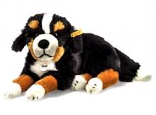 Steiff Bernese mountain dog Senni 45 lying