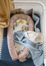 Sebra Baby nest Wildlife sunset pink