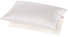 Paradies Goose Down pillow Pali Organic cotton 40 x 60 cm