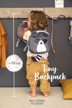 Lässig Tiny Backpack About Friends Raccoon