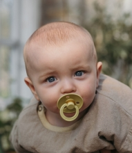 BIBS Pacifier natural rubber meadow/earth 0-6 month